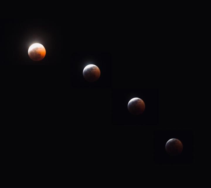 Moon Poem – Purpose and Prose